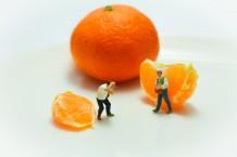 Mandarin Photography
