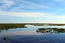 Florida, Kissimmee