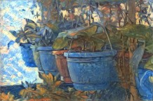 Plants in ponds