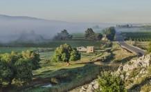 Roads Of Fog