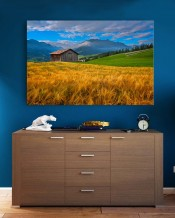 Canvas - Swiss Farm 2 by Rashed Sabzali