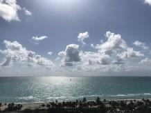 Miami Dreaming