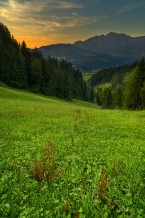 الطريق إلى الطبيعة