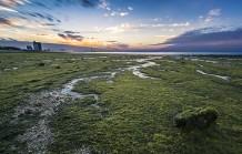شاطئ الشويخ