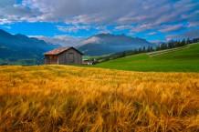 مزرعة في سويسرا